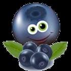 Znalezione obrazy dla zapytania jagódki